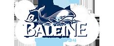 Sal La Baleine
