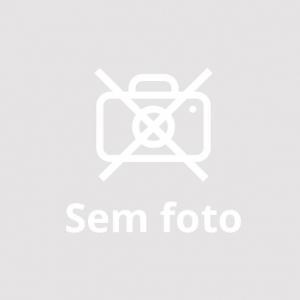 Chapa Bifeteira Ferro Fundido Dupla Face 46 x 26 cm - Fundição Santana